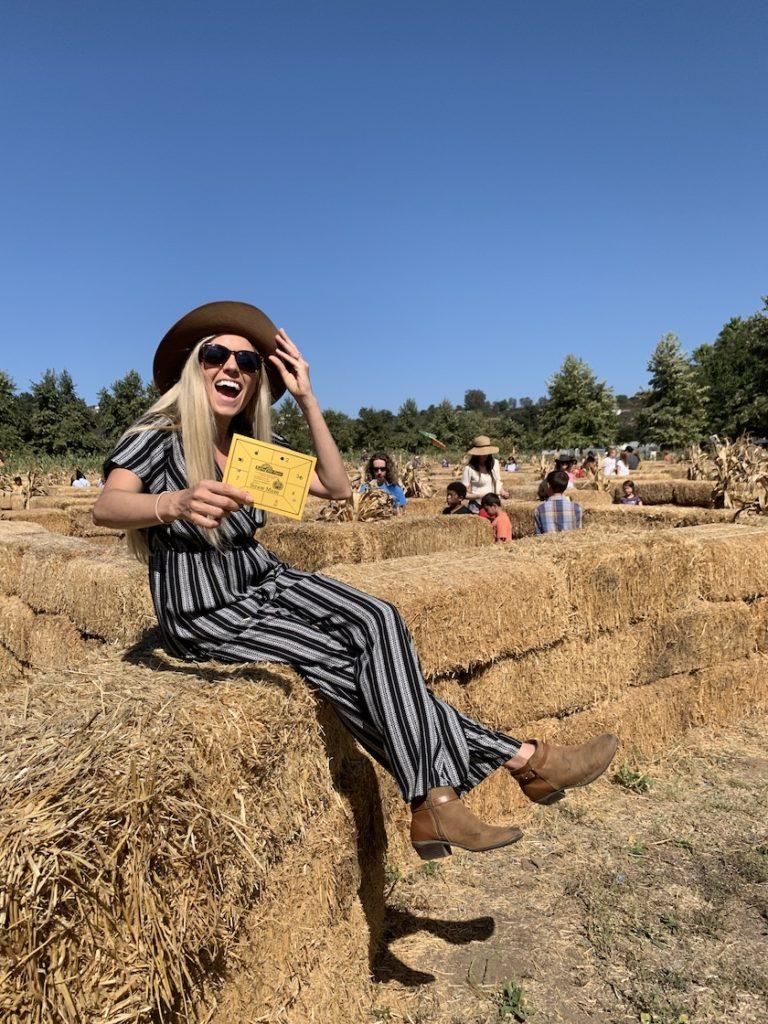 San Diego pumpkin patch hay maze