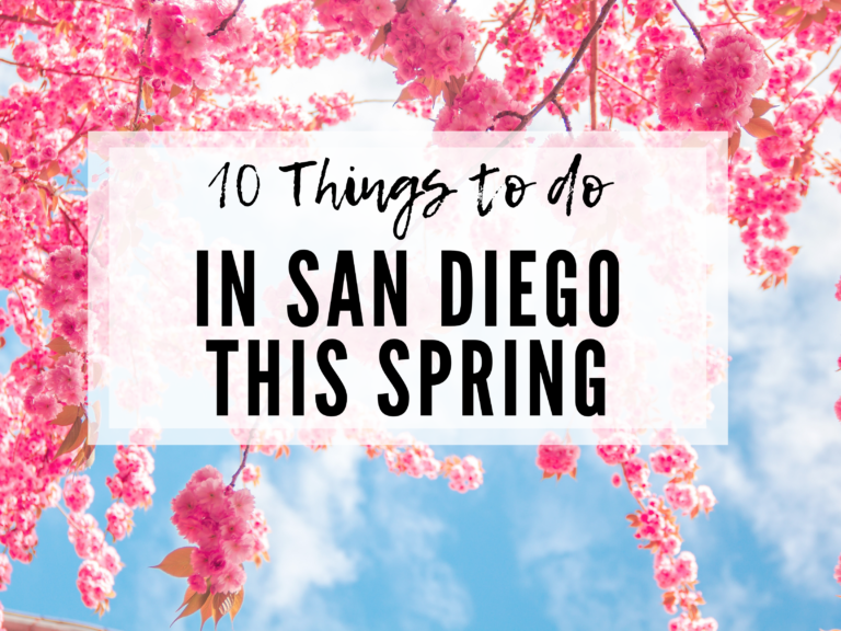 10 THINGS TO DO IN SAN DIEGO IN THE SPRING