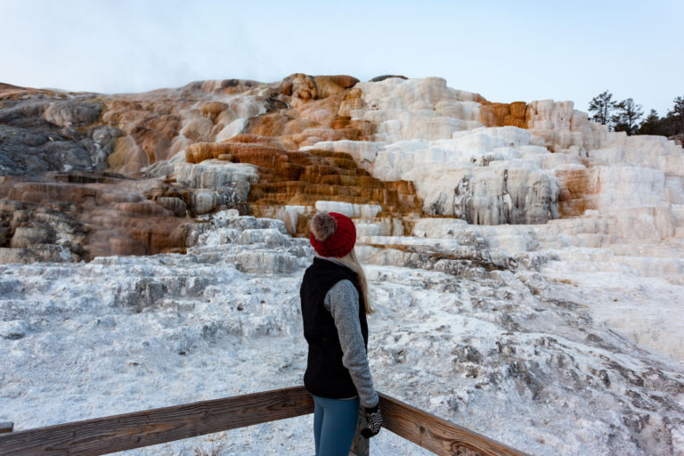 HOW TO GET MAMMOTH HOT SPRINGS ALL TO YOURSELF (YELLOWSTONE NATIONAL PARK)