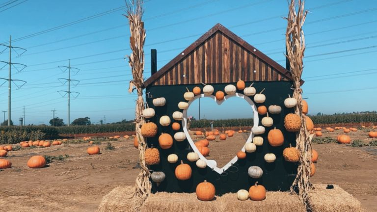 10 BEST FALL IN SAN DIEGO EVENTS