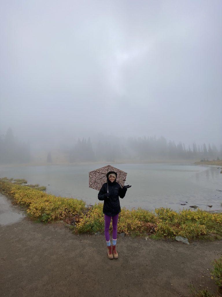 Tipsoo Lake on a Rainy Day