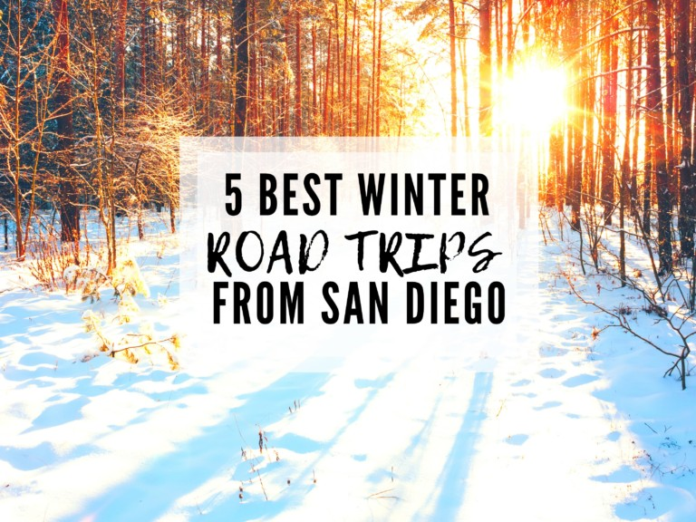 5 Easy Winter Road Trips from San Diego For Snow Activities