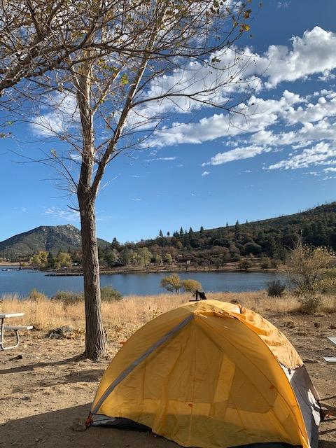 Tent in front of tree in Julian, CA