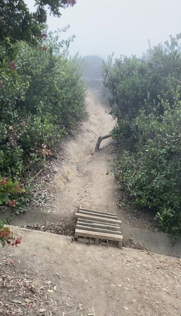 Trail to the La Jolla swings