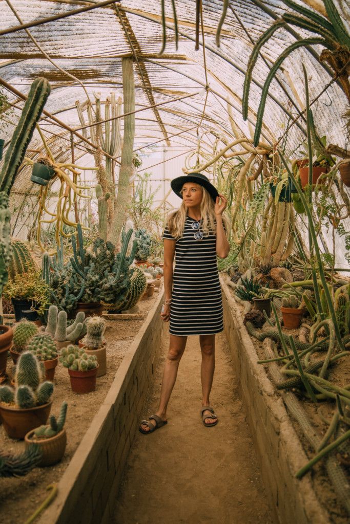 Girl standin gin the Moorten Botanical Garden which is something fun to add to your Palm Springs weekend getaway itinerary