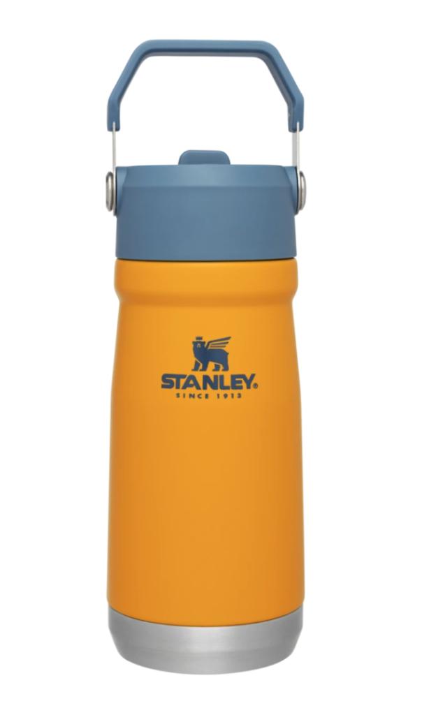 Stanley water jug