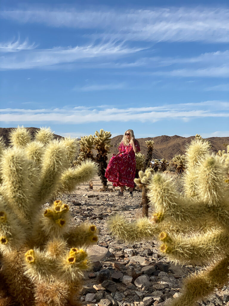 Chelsey in the Cholla Cactus Garden which is one of the best things to see in Joshua Tree
