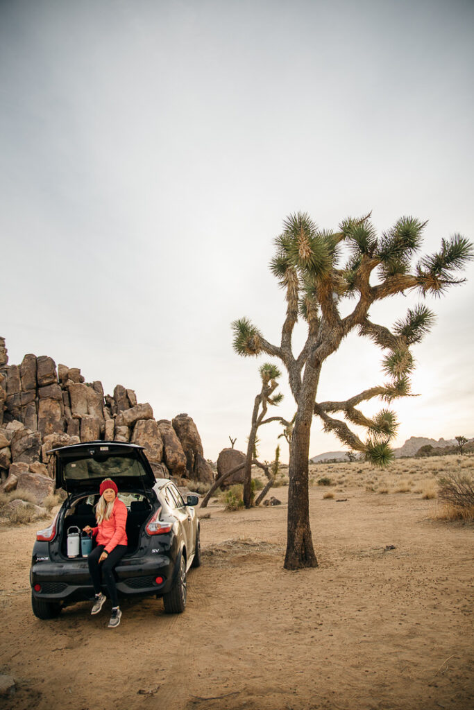 Chelsey sitting in her car in Joshua Tree