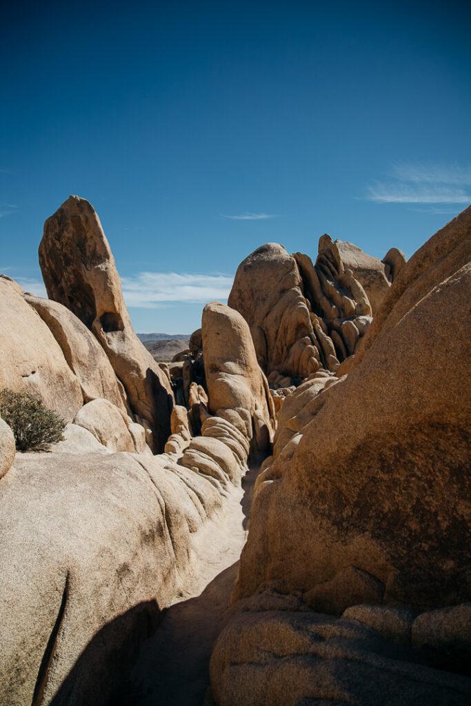 Path of rocks near Arch Rock in Joshua Tree