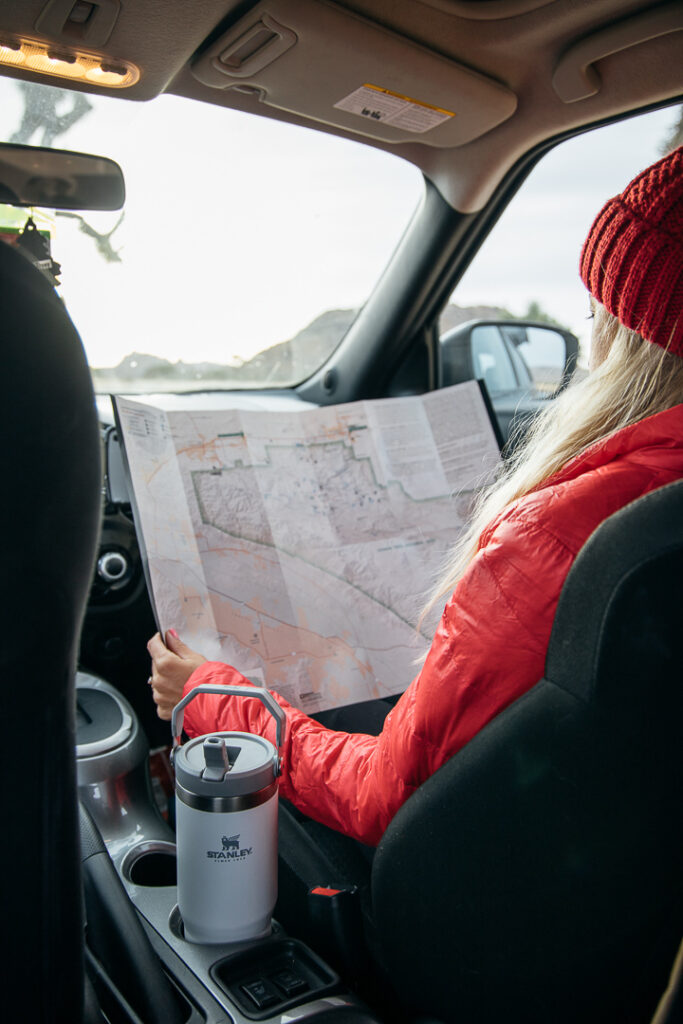 Chelsey in car reading a map with her eco-friendly Stanley water bottle.