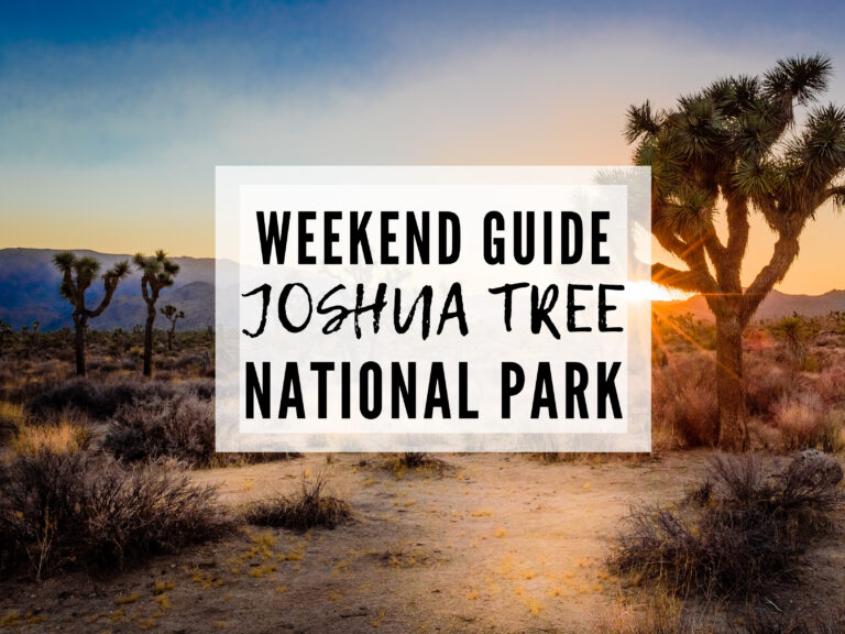 ULTIMATE GUIDE TO THE  BEST THINGS TO DO IN JOSHUA TREE